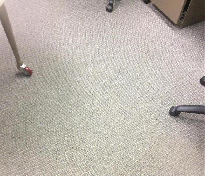 Commercial Carpet Cleaning  After