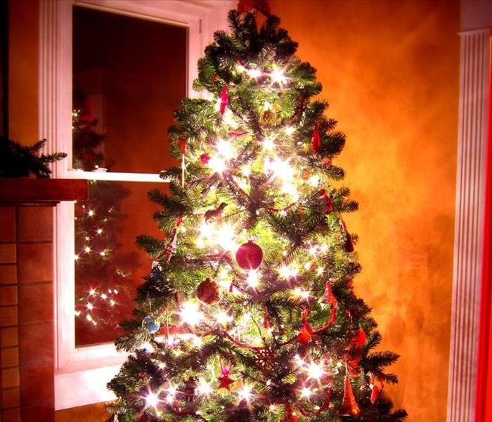 Fire Damage Christmas Tree Safety