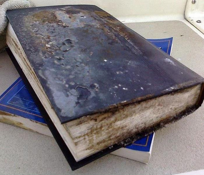 Mold Remediation Your Belongings and Mold Damage